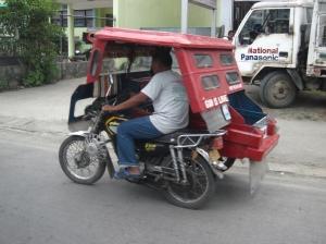 Bohol  (60 of 3)